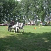 olcsvaapati-lovas-napok-1